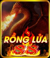 quay-hu-rong-lua