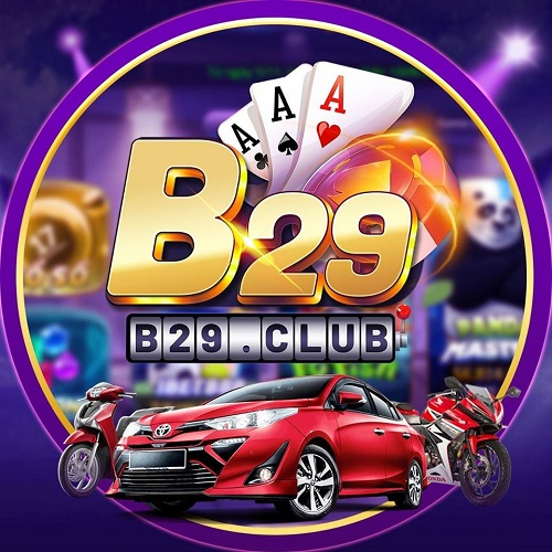 B29 Top